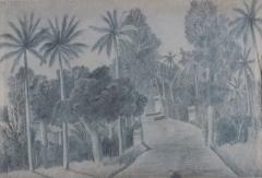 Tekening van de Grote Postweg in Meester Cornelis