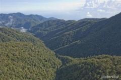 Het grootste gedeelte van Papoea ziet er nog gewoon zo uit: dichte regenwouden zonder economische ontwikkeling