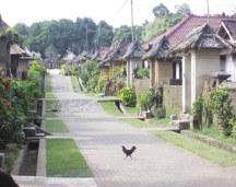 Een uitgestorven dorpje in Noordoost-Bali tijdens Nyepi.