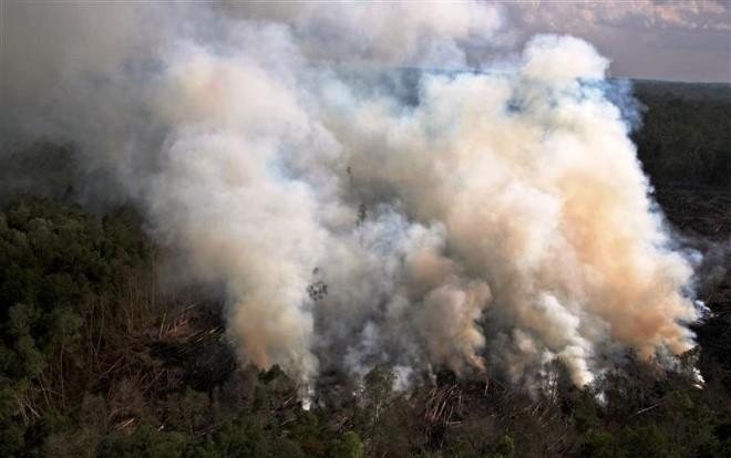 Nadat het bruikbare hout is gekapt worden vaak bosbranden gesticht om de waardeloze ondergroei te verwijderen en het land vruchtbaar te maken. Dit leidt soms tot ongecontroleerde branden, en vaak tot grote luchtverontreiniging. Geregeld verspreidt de rook zich van Borneo en Sumatra tot aan Singapore en Maleisië.
