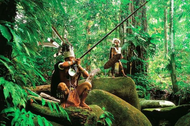 Het Ibanvolk is een van de subgroepen van de Dajaks. Tot aan de jaren 50 van de vorige eeuw werd het koppensnellen door deze groep toegepast. Ondanks dat veel Ibans inmiddels gemoderniseerd zijn leven er ook nog groepen op de traditionele manier, zoals de jagers op de foto in het Maleisische gedeelte van het nationaal park.