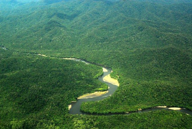 Het grootste deel van het Hart van Borneo is bedekt met dichte bebossing. De foto laat het nationaal park Kayan Mentarang in Noord-Kalimantan zien.