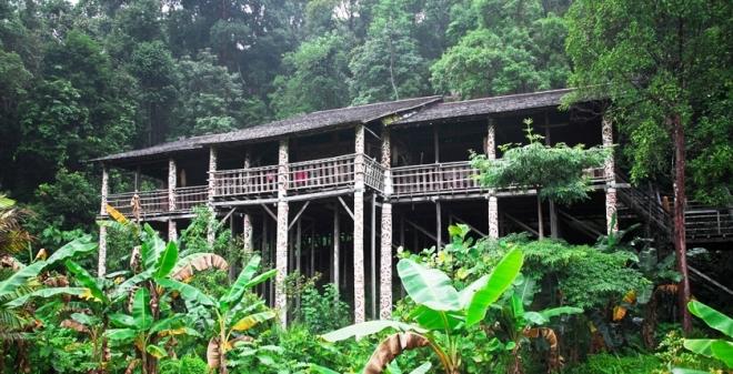 De oorspronkelijke bewoners van Borneo zijn de Dajaks. Het 'langhuis', zoals op de foto te zien is, is de typische bouwstijl voor de huizen van deze bevolkingsgroep. Gewoonlijk zijn deze huizen op palen gebouwd en van binnen verdeeld over openbare en privégedeelten. De bouw van de langhuizen is voor optimale aanpassing aan het leven in het oerwoud.