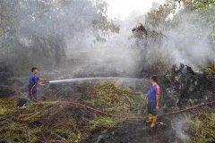Traditionele bluswerkzaamheden hebben nauwelijks zin meer vanwege de grote schaal van de bosbranden.