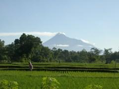 Het gebied van Kaliurang, aan de voet van de Merapi-vulkaan.
