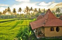 bungalow-ubud