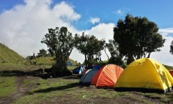 Merbabu camping