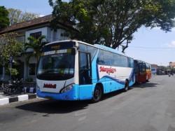 bus Denpasar Jember