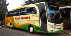 bus Pahala Kencana.png