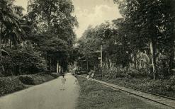 Tram Batavia Jacatraweg.png
