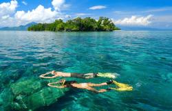 Hoga Wakatobi snorkelen.png