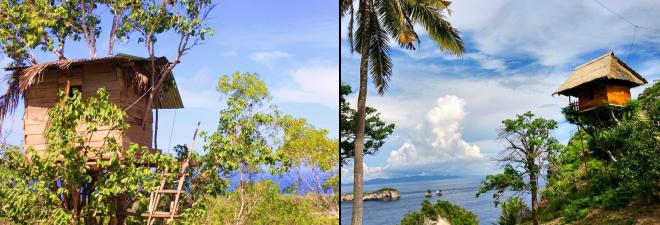 Rumah Pohon Nusa Penida.png