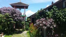 Jaswan Inn homestay Borobudur.jpg