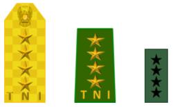 Generaal TNI AD.png