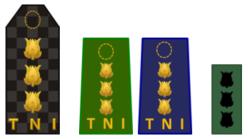 Kolonel TNI.png