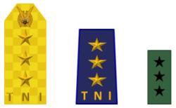 Vicemaarschalk TNI AU.png